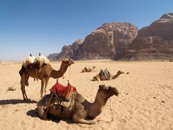 Een maand in de woestijn met zo veel lucht als ik wilde